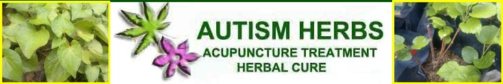 Autism Herbs, Autism Herbs Treatment, Autism Herbs Medicine, Autism Herbs Cure, Autism Herbs Neuro Acupuncture Treatment Cure, Autism Herbs Centre